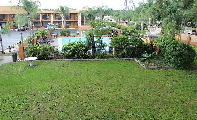 Hotels near busch gardens tampa